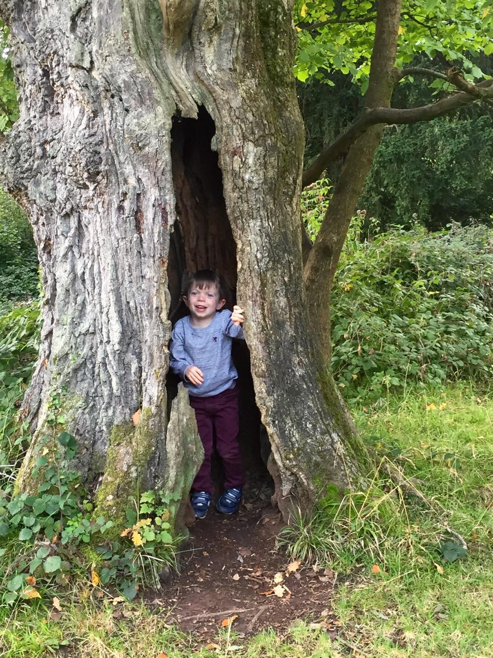 leigh-woods-hole