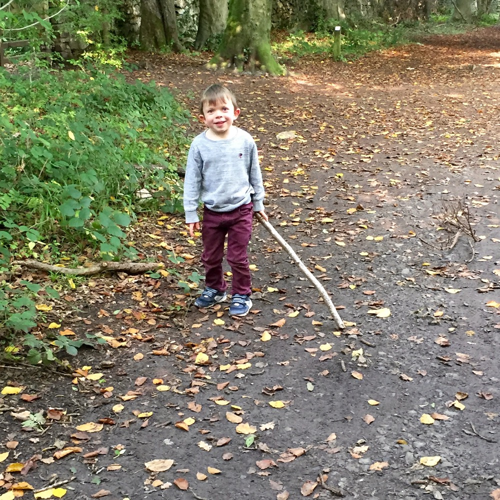 leigh-woods