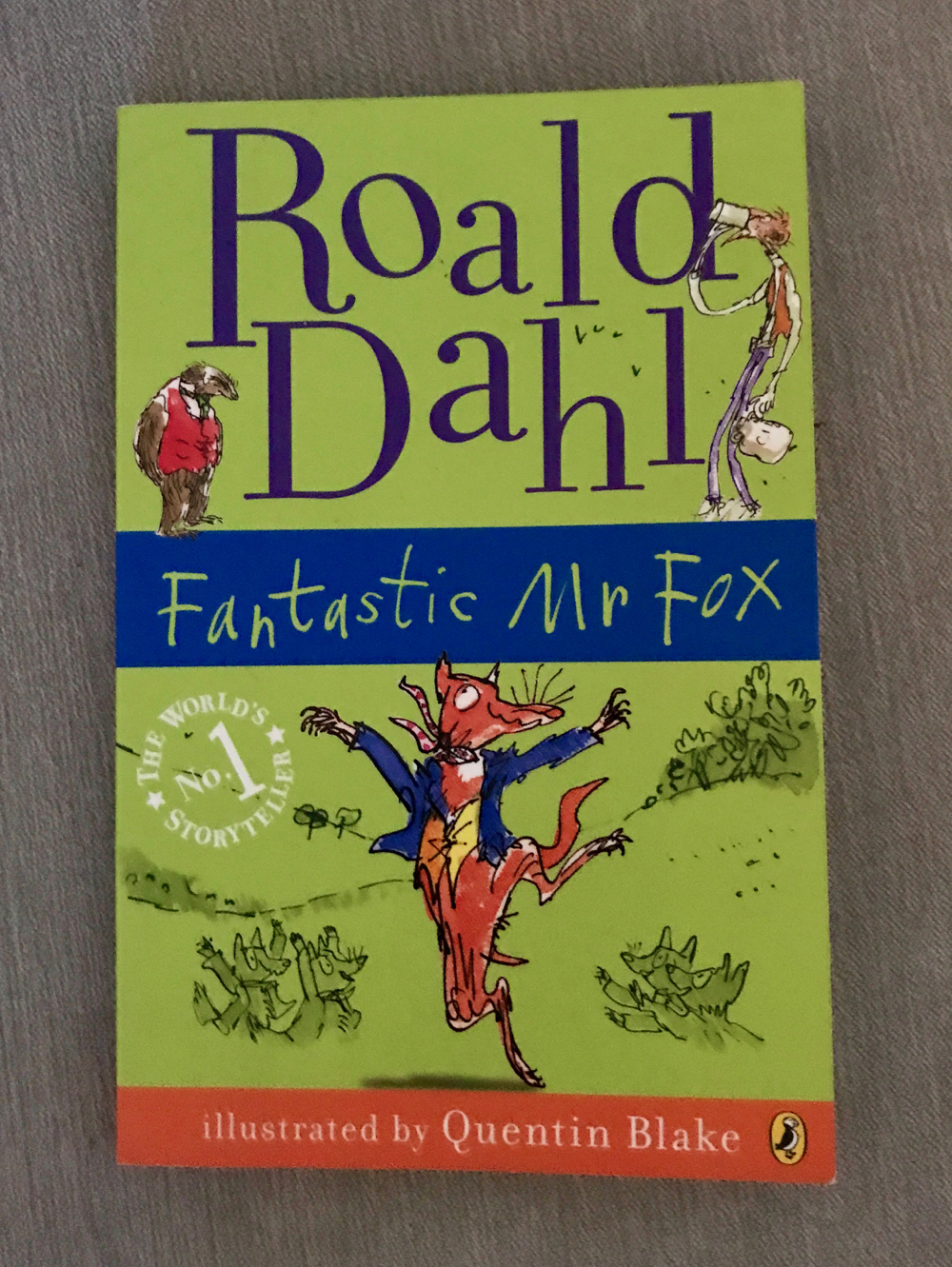 Fantastic Mr Fox book